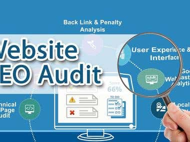 Professional detailed SEO audit and strategy development