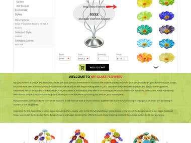 Web/Graphic Designing