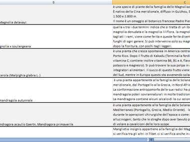 Almasoodi889 Data Entry Web Search Copy Typing Specialist