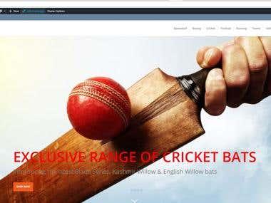 Sports Website Wordpress