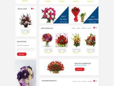Ecoomerce website design