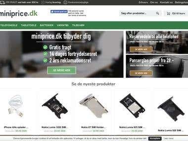 Development of an e-Commerce Store