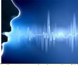 Voice Recognition & Audio Processing using C++ & Matlab