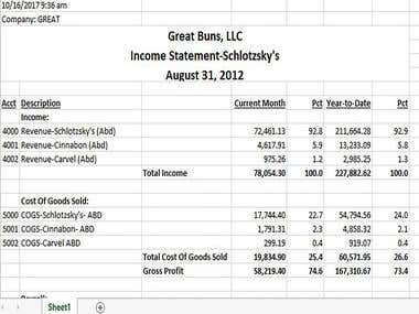 P&L Income Statements
