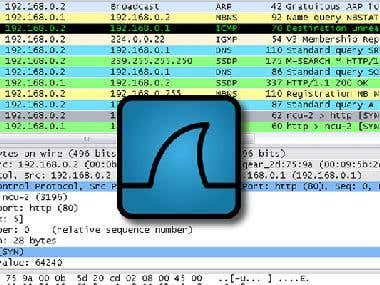 Wireshark Assignment