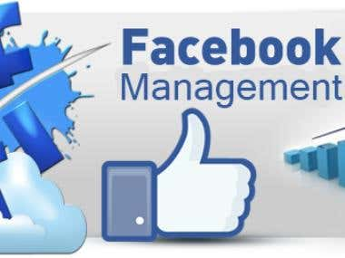Facebook Managment & Marketing