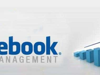 Facebook Ads Managmant