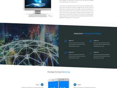 One Page Website for icopivot.net