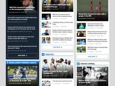 Cricket News Website ( Wordpress Theme Development )