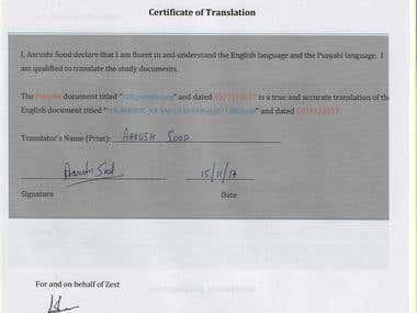 TRANSLATING/ PUNJABI/ TYPING
