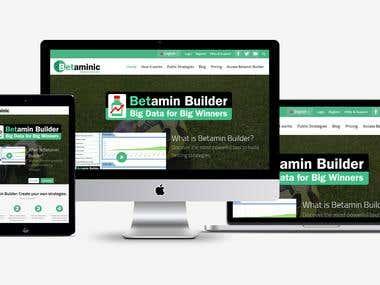 Sports Analytics Platform - Betaminic