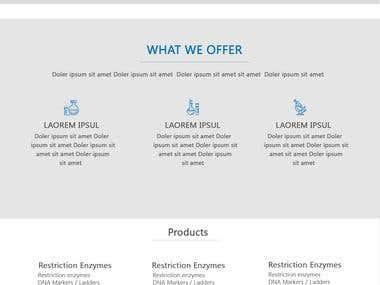 Make My Lab Website Design