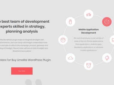 Plugin Development Theme