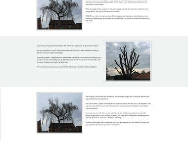 Bigbrowntree.com web design and development