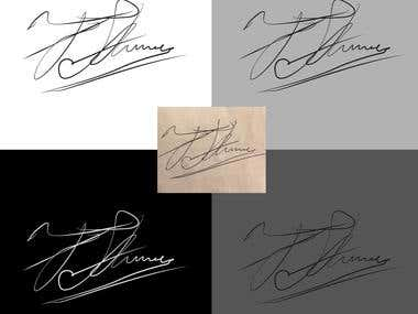 Signature to vector