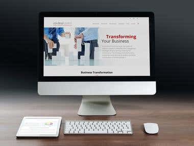 Website for a consulting company