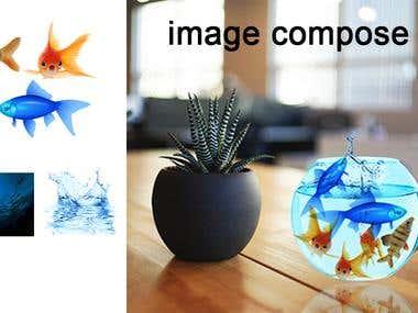 Image compose