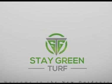 INTRO FOR STAY GREEN