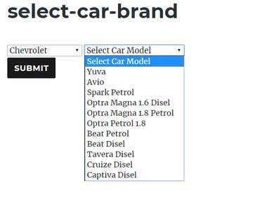 The wp plugin select car brand