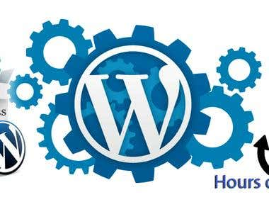 I Will Do Any Wordpress Theme Customizetion And Fix Error