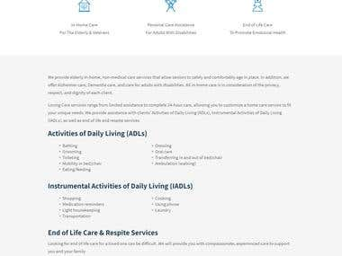 Website Copy: Loving Care