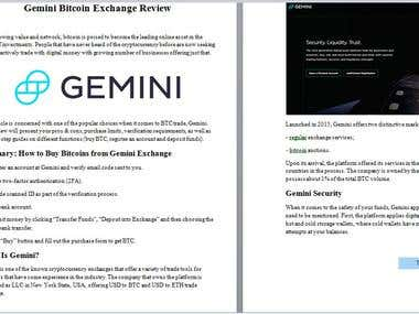 Review Writing For Gemini