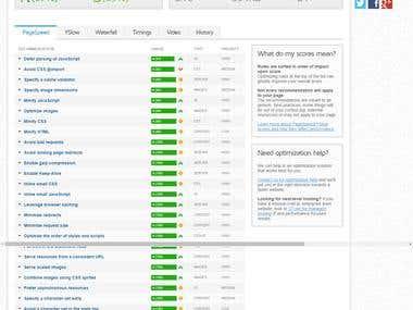 PageSPeed Insights | GTMetrix | Speed Optimization