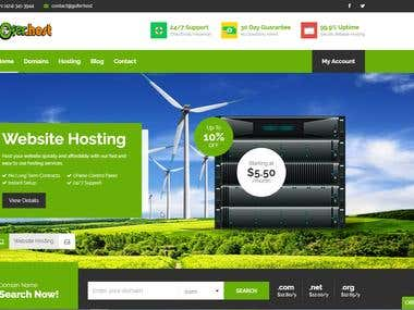 Web hosting website development