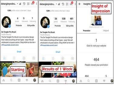 Instagram Marketing Expert