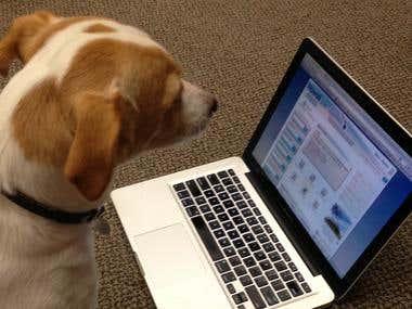Application Watchdog