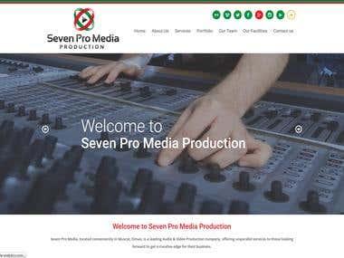 Seven Promedia Website
