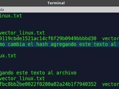 Algoritmos de hash funcionamiento y como usarlos en terminal