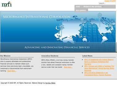 Microfinance International website design