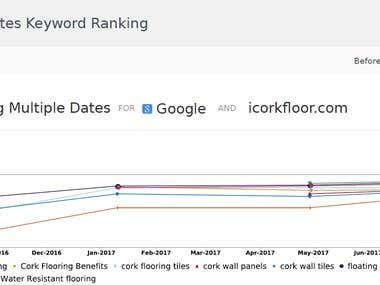Top 1 Google USA results with our SEO strategies