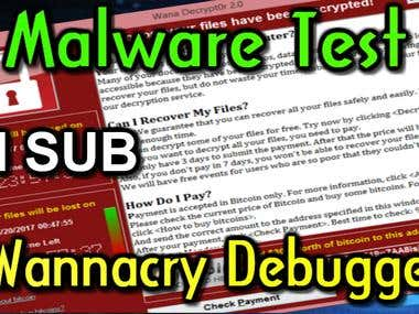 WannaCry Debugger Dynamic Malware analysis Services. VM envi