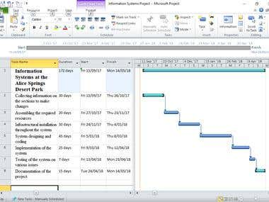 Gantt Chart in MS Project