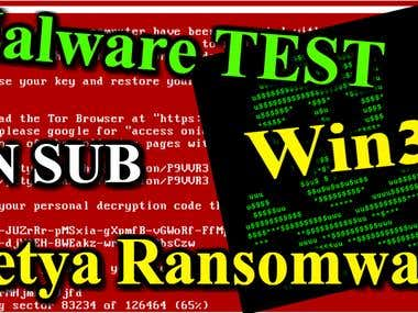 Petya Ransomware Dynamic Analysis