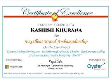 Excellent Brand Ambassadorship with MICROSOFT