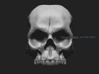3D SCULPTING - SKULL