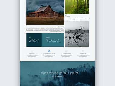 SATFVX - Web Design & Branding