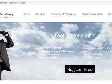 Wordpress CMS Consultancy Website Design and Development