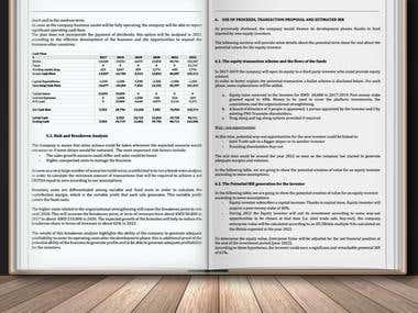 Business Plan, Financial Plan & Feasibility Analysis