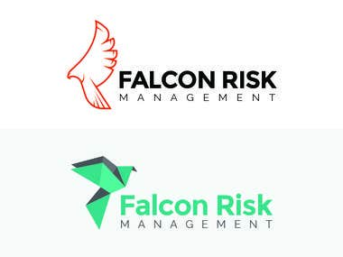 Falcon Risk Management