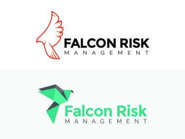Falcon Risk Management