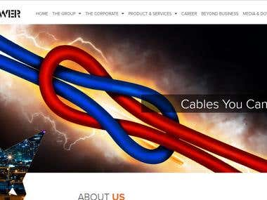 Complete Dynamic Website and CMS Development