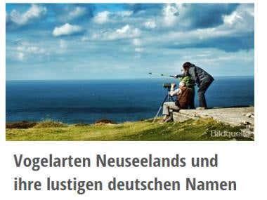 Vogelarten Neuseelands und ihre lustigen deutschen Namen