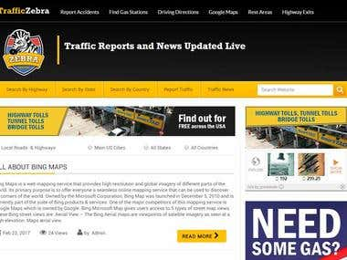 Traffic Website