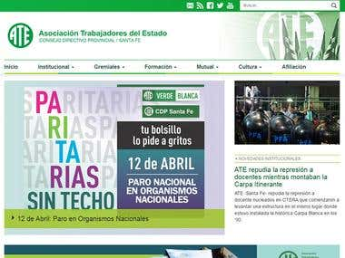 Web-site institucional