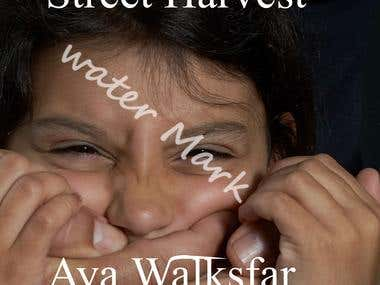 Street Harvest eBook cover