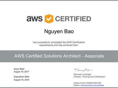 AWS Certified Solutions Architect - Professional (English)